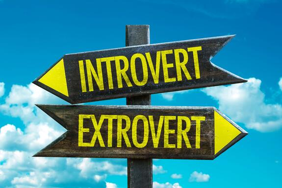 DevRel professionals are extroverted introverts