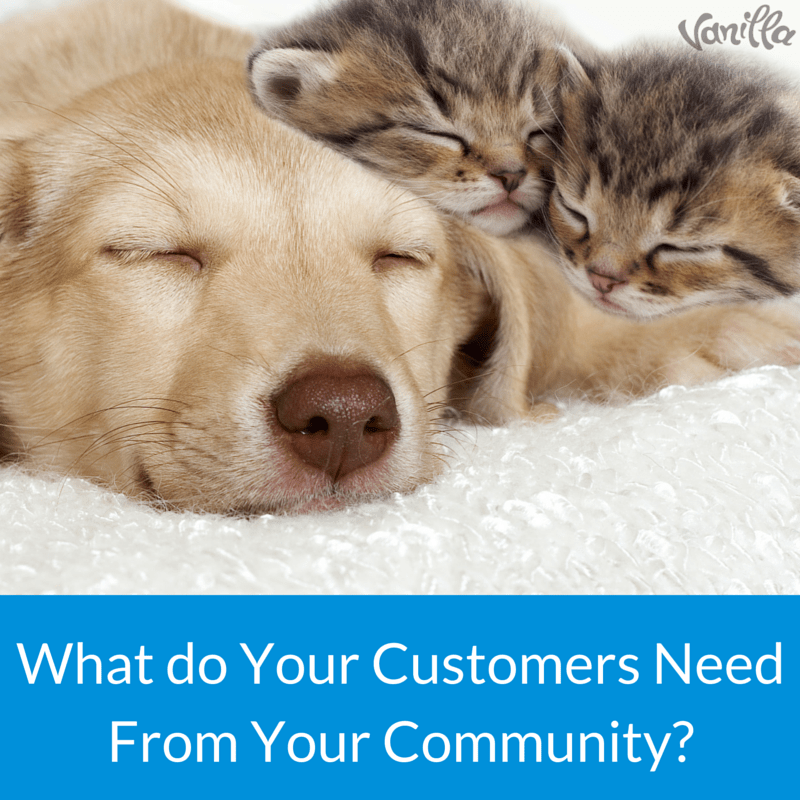 What do Your Customers Need From Your Community-