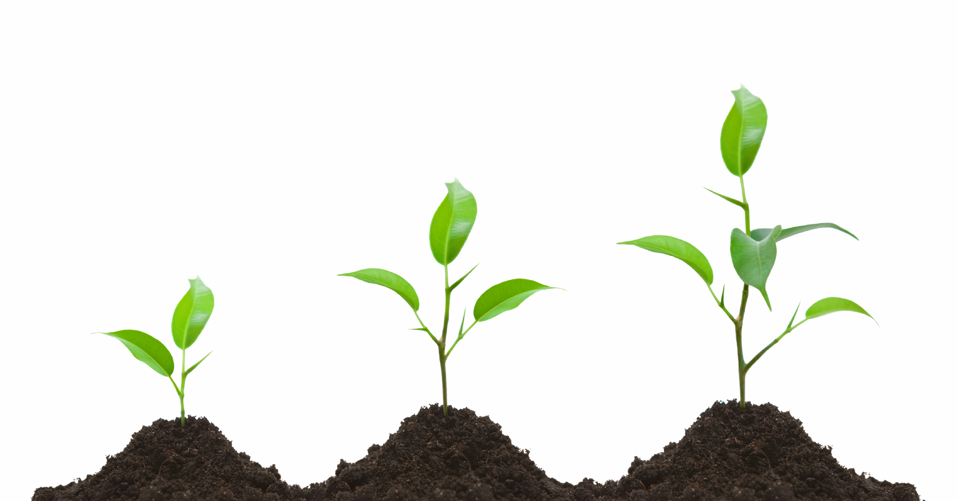 3 Ideas to Grow Your Social Strategy