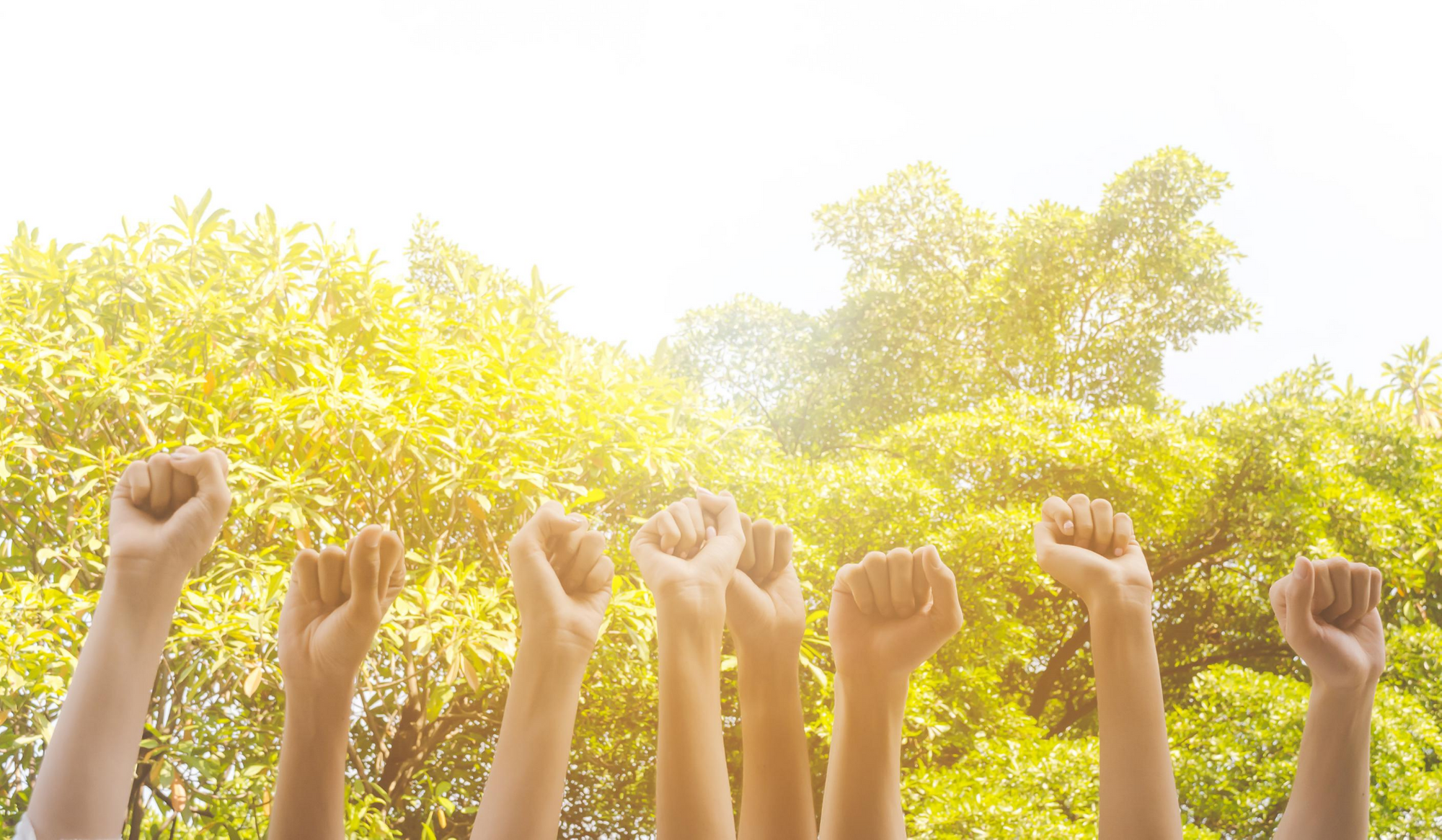 4 Nonprofits That Benefit From Their Online Communities